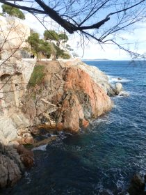Steps in sAgaro